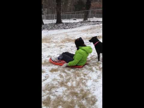 Blind / Autistic - Sledding with her dog.