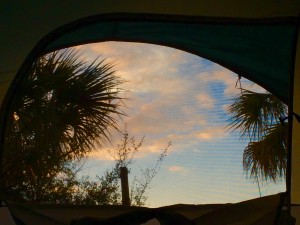 view looking out of the tent while camping in Florida