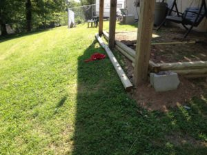 Perspective of the slope of the backyard