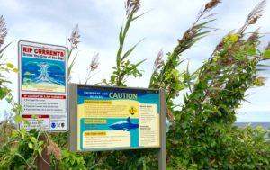 Shark Warning signs on Coast Guard Beach on Cape Cod