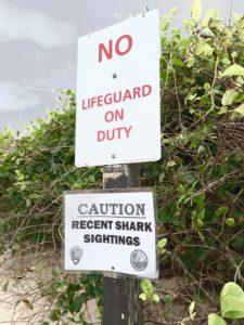 Recent Shark Sighting Warning Sign at Coast Guard Beach