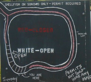 The diagram on the chalkboard shows which areas in Salt Pond are open to shellfishing.